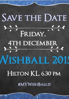Make A Wish Foundation's Wish Ball 2015