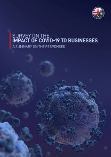 Survey On The Impact of COVID-19 To Businesses: A Summary On The Responses